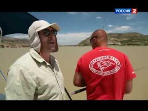 диалоги о рыбалке испания карп