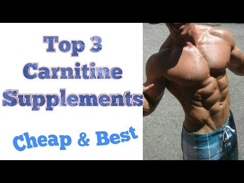 Top 3 Carnitine Supplement  Carnitine Benefits  Fat Burner  Hindi  Fitness Facts