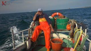 Channel Islands, Fishing, Crabs. lobsters, deadliest catch? Ventura, Conger eel, Herm, St Peter Port,