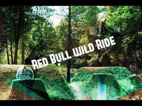 Red Bull Wild Ride-2014 (видео)