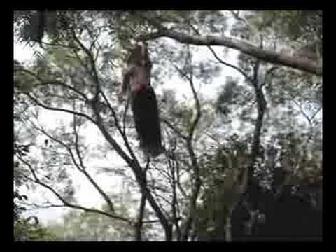 只靠雙手不用腳就可以輕鬆爬上樹的高手,簡直就是猴子…
