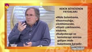 Kekik Bitkisinin Faydaları - Tıbbi Bitkiler - Prof. Dr. İbrahim Saraçoğlu