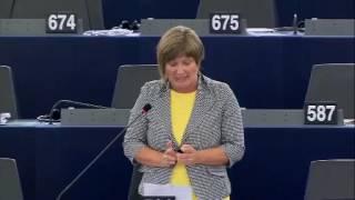 Felszólalás a külső határokon végzett ellenőrzésekről szóló vitában