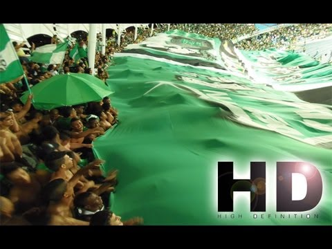 Frente Radical Verde Ultras cantos cali vs millonarios 1-0 22/06/2013 - Frente Radical Verdiblanco - Deportivo Cali