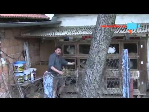Obec Dolní Újezd (Pardubický kraj) - soutěž Video Vesnice roku 2013 - Díl 2