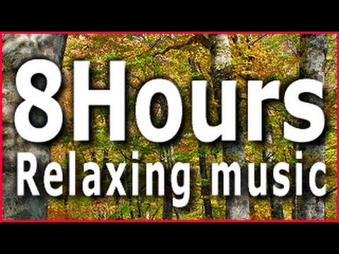 8 Hours Relaxing music(Acoustic Guitar) Sleep,Study,Meditation,Reiki,Zen,Yoga