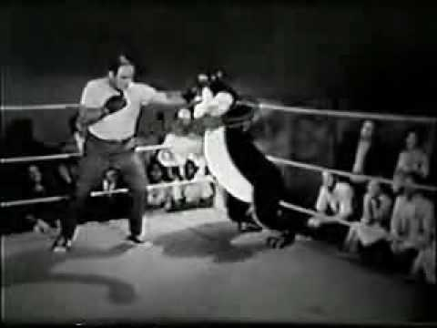 Hamms Beer Commercial – Vintage Boxing reel