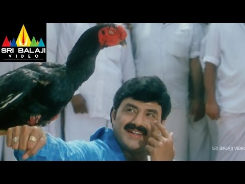 Palanati Brahmanaidu Movie Chittimallu Fight | Bala Krishna, Sonali Bendre | Sri Balaji Video