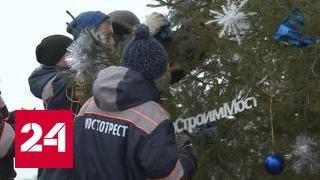 Строители Крымского моста посадили 6-метровую ёлку