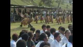High-Precision FIJIAN MEKE - TAVEUNI, Fiji