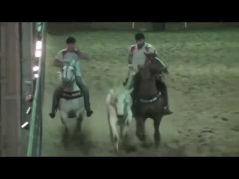 Silverlord Dom Roxão - 1º Lugar Derby Arena São Francisco 2016 Parte 2