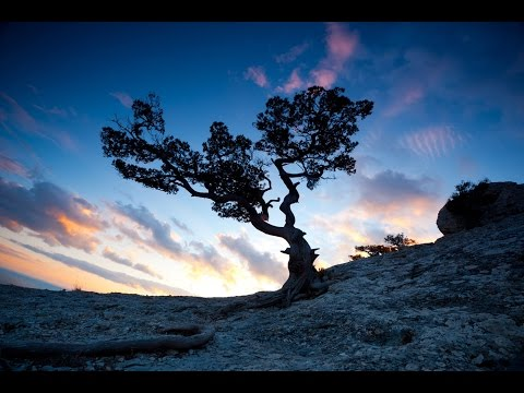 1 Hour Tibetan Music: Shamanic Meditation Music, Calming Music, Healing Music, Soothing Music ☯438