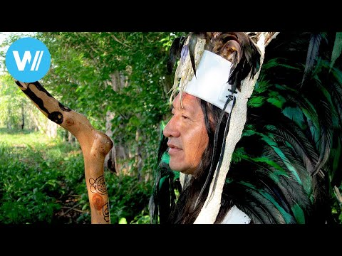 2012: The Beginning - What the Sacred Maya Texts Really Say (Full Documentary)