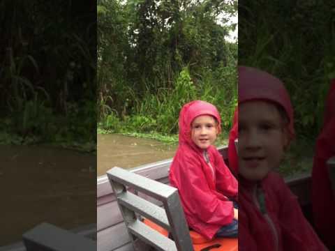 Peru 60 percent of Amazon's total annual rainfall