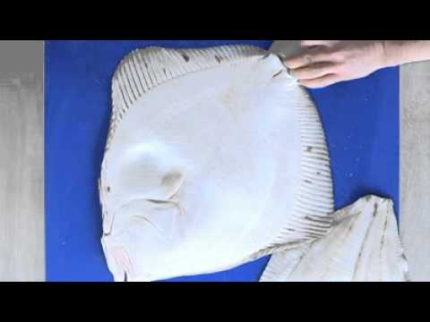 Filleting Turbot - Cross Cut Fillet