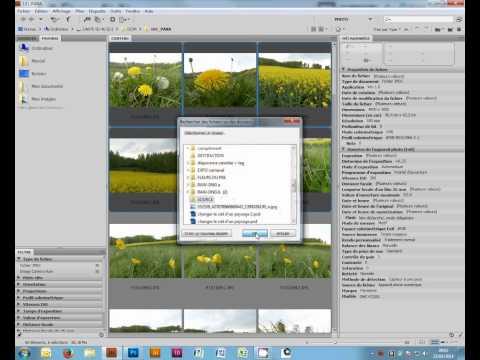 comment traiter plusieurs images photoshop