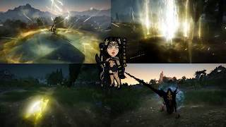 Black Desert Valkyrie PvP/Nodewar - Play with Karma!