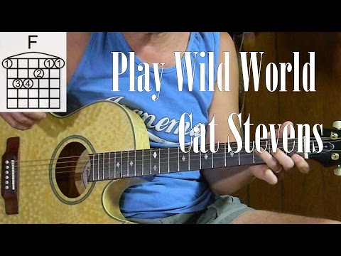 How to Play Cat Stevens Wild  World – Learn Songs on Acoustic Guitar – Guitar Lessons