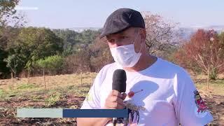 Projeto incentiva menipolicultura em Marília