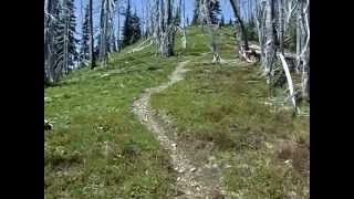 Manning Park (BC) Canada  City new picture : Skyline Trail Run - Manning Park BC