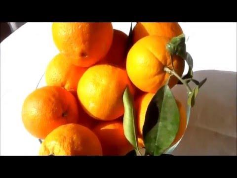 Naranjas Orgánicas[;;;][;;;]