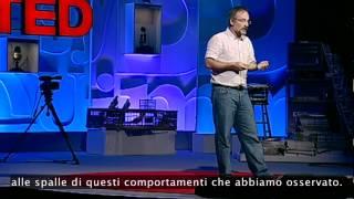TEDItalia - Stefano Mancuso: Alla Radice Dell'intelligenza Delle Piante