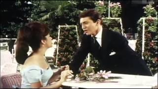 Rex Gildo - Wir Beide Sind Allein 1962