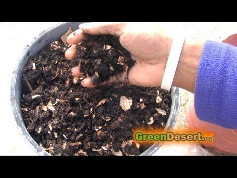 DIY Worm bin, harvesting worm castings and fertilizing your garden