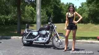 6. Used 2005 Harley Davidson Sportster 1200 Custom Motorcycles for sale -Homasassa, FL