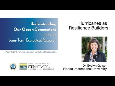 NSF-LTER 2018 Symposium - Evelyn Gaiser: Hurricanes as Resilience Builders