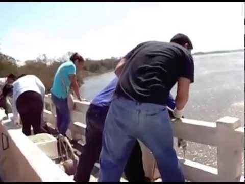 Coleta de água e sedimentos no Rio Doce em Linhares  Es
