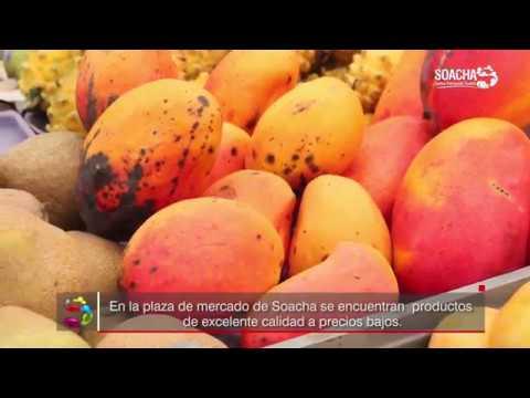 Los mejores productos en la Plaza de Mercado de Soacha