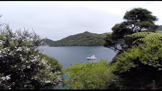 Great Barrier Island New Zealand  city photos : SAILING GREAT BARRIER ISLAND - NEW ZEALAND
