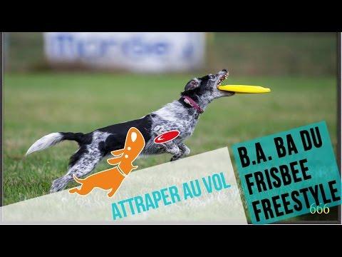 Le B.A BA du frisbee : attraper au vol