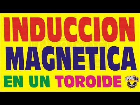 LA INDUCCION MAGNETICA EN UN TOROIDE