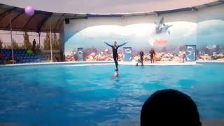 Дельфинарий Оскар, Самое лучшее... часть 2. Наш поход в дельфинарий на Азовском море. Очень интересное выступление с дельфинами. Очень рады что попали в это чудесное место и хотим поделится этим видео про дельфинов.ссылка на видео https://youtu.be/kT73ZTxawQMЕсли вам понравилось нашe видео, ставьте лайк   и подписывайтесь на мой канал! ⚫ https://www.youtube.com/c/GlebkaLifeСмотрите другое мое видео!► https://goo.gl/STpVZo     Киндер сюрпризы► https://goo.gl/dp2mUo     Роботы, Трансформеры► https://goo.gl/oN8tYB     Машинки, Хот Вилс► https://goo.gl/04mlDa     Шары СЮРПРИЗЫВпереди много интересного. Новое видео каждый день.Глебка в соц. сетях:Одноклассники https://goo.gl/SvM4ObВконтакте https://goo.gl/d0ZDvA+Google https://goo.gl/vELY6vЛУЧШАЯ ПАРТНЕРКА как у меня http://join.air.io/coolll If you liked our video, give a like and subscribe to our channel! https://www.youtube.com/c/GlebkaLifeA lot more coming. New videos every day.Best Affiliate Programs like me http://join.air.io/coolll