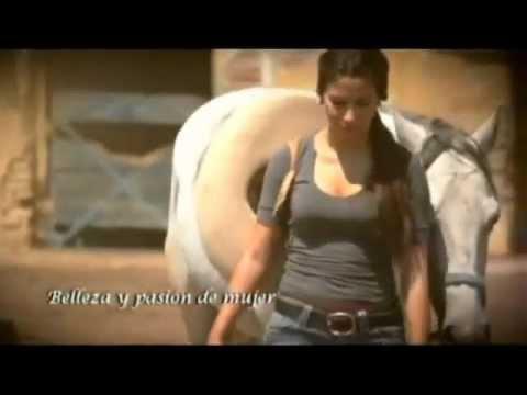 El novillo Despuntado,El Muchacho Alegre - Banda el Recodo