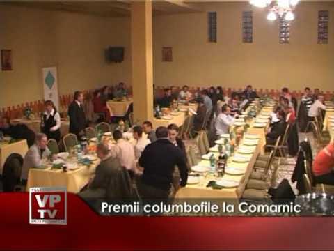 Premii columbofile la Comarnic