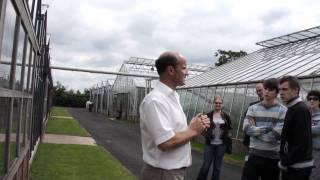 #489 David Austin Roses 2011 - Einblicke in die Rosenzüchtung