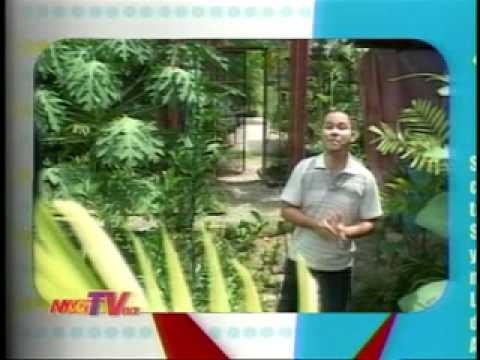 Archival Eco House @ Mag TV Cebu
