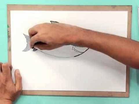 รูปปลา - ออกอากาศ : วันจันทร์ที่ 23 ม.ค. 2555 เนื้อหา : ออกแบบและประดิษฐ์ถุงดินสอแบบต่างๆเป็นของตนเอง...