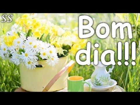 Mensagens para whatsapp - Bom dia! Mensagem alegre com lindas flores! WhatsApp/Facebook