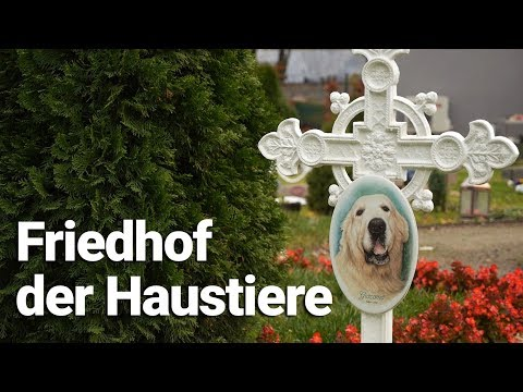 Wien: Friedhof der Haustiere - der Wiener Tierfriedhof
