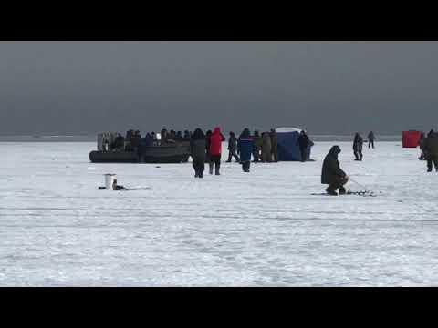 Рыбак рыбака: массовая драка любителей зимней рыбалки произошла в Приморье