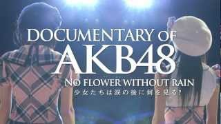 Nonton             Documentary Of Akb48 No Flower                              Ver    Akb48         Film Subtitle Indonesia Streaming Movie Download