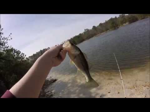Spring Pond Bass Fishing, First Bass of 2015!