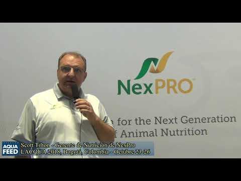 Scott Tilton   Gerente de Nutrición de NexPro