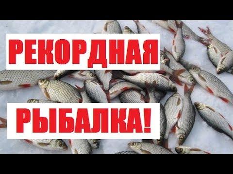 Рекордная рыбалка!//Жизнь в деревне. (видео)