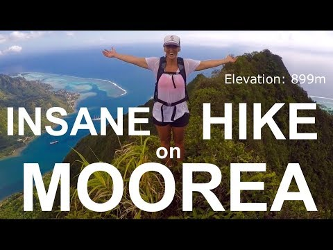 You GOTTA SEE THIS! MOOREA is INSANE.  - Adventure 26 Sailing Around the World