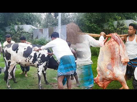 Amazing Big Muslim Beef Shop | Full Cow Meat Processing by Expert Butcher | Amazing knife skills